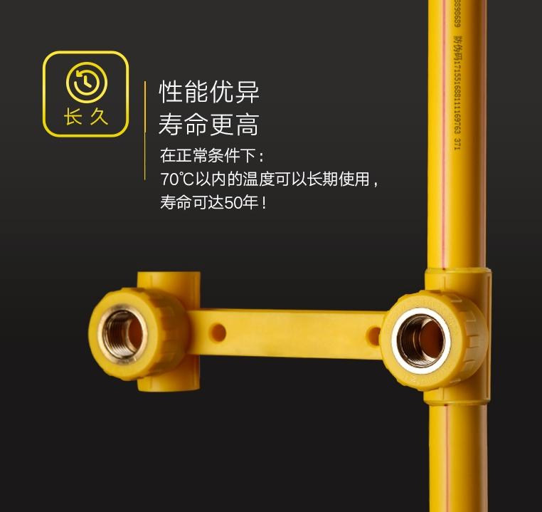 PP-R黄色系列-06